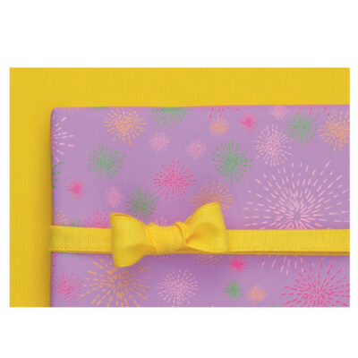 Papel Regalo Raso Colors PA587